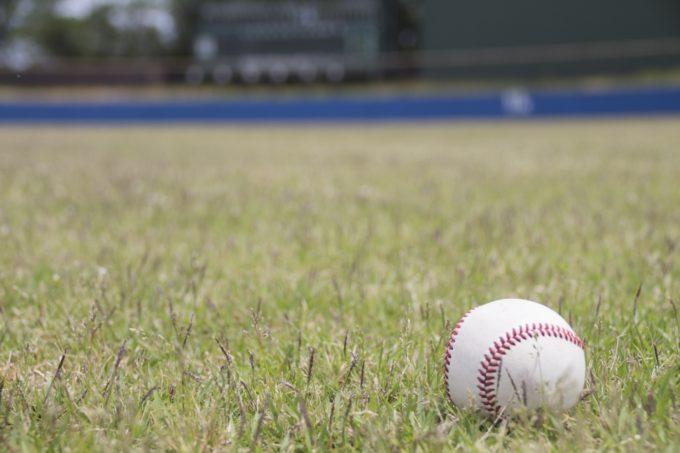 プロ野球志望届一覧